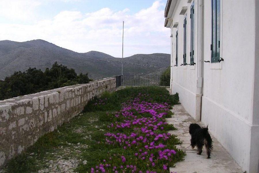 Faro con giardino